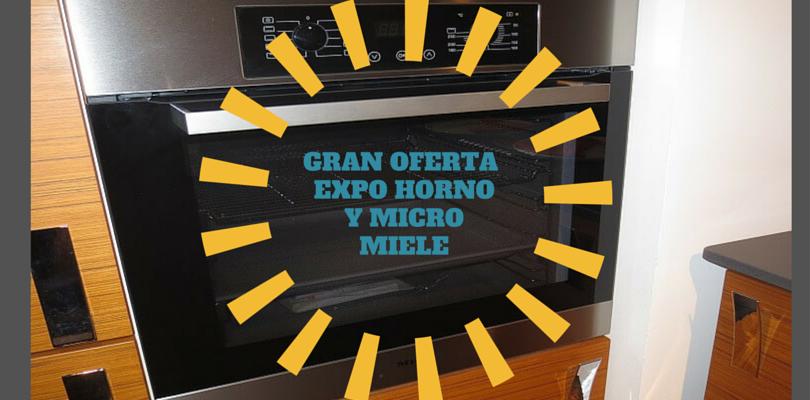 GRAN OFERTA HORNO Y MICRO MIELE